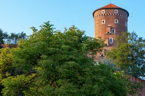 Wawel Royal Castle in Kraków (tower)